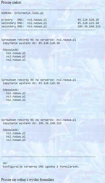 Na to czekaliśmy tydzień czasu - konfiguracja serwerów DNS zgodna z formularzem